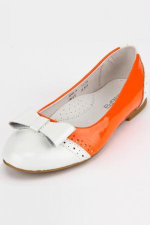Туфли Зебра. Цвет: оранжевый