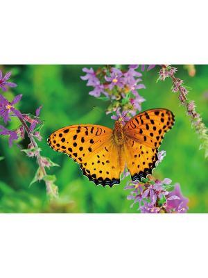 Салфетки, 4 шт. GiftLand. Цвет: зеленый, сиреневый, оранжевый, черный
