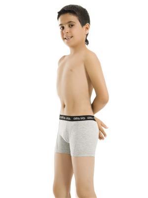 Трусы боксеры для мальчиков Oztas kids' underwear. Цвет: светло-серый