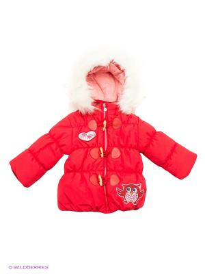 Куртка Baby Club. Цвет: красный