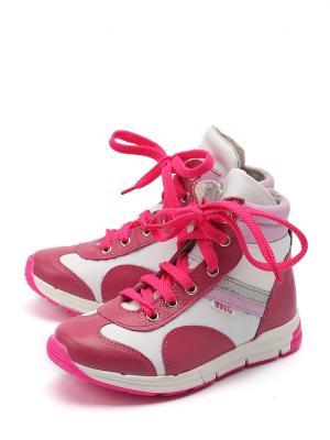 Ботинки Батичелли. Цвет: фуксия