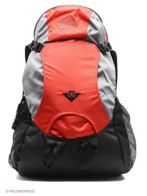 Рюкзак GREENWOOD. Цвет: серый, красный