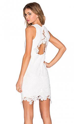 Кружевное платье rosette Bardot. Цвет: белый
