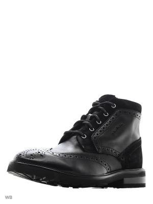Ботинки Strellson. Цвет: черный
