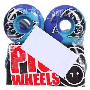 Колеса для скейтборда  Head Swirl Blue 101A 51 mm Pig. Цвет: фиолетовый,голубой