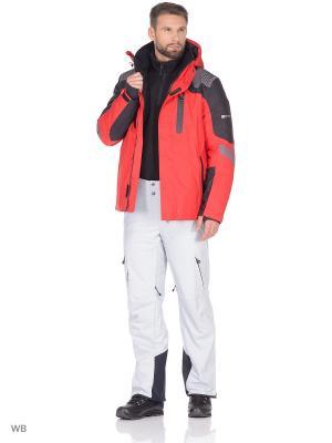 Куртка Stayer. Цвет: черный, белый, красный