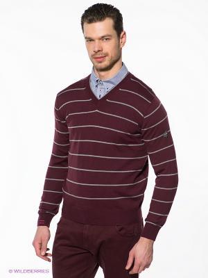 Пуловер Navigare. Цвет: бордовый