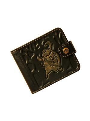 Портмоне СТОП КРАЖА - с RFID защитой Кажан. Цвет: коричневый