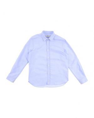 Pубашка MACCHIA J. Цвет: небесно-голубой