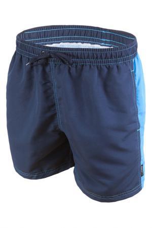 Shorts GWINNER. Цвет: blue, turquoise