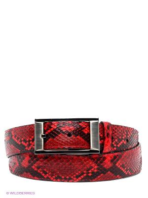 Pемень Pan American leather. Цвет: красный