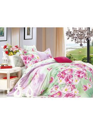 Комплект постельного белья ДУЭТ сатин, рисунок 687 LA NOCHE DEL AMOR. Цвет: салатовый