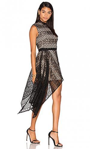 Платье aleita Acler. Цвет: черный