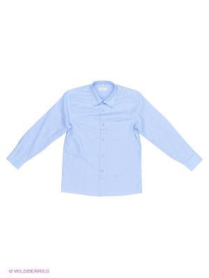 Рубашка Cleverly. Цвет: голубой, фиолетовый