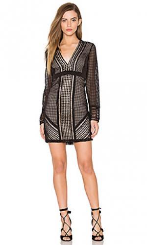 Кружевное платье lidia Bardot. Цвет: черный