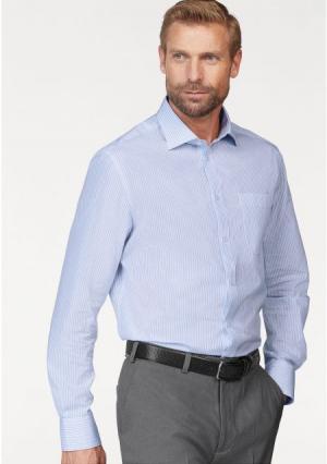 Рубашка STUDIO COLETTI. Цвет: голубой/белый в полоску