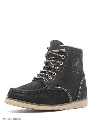 Ботинки STORM. Цвет: черный