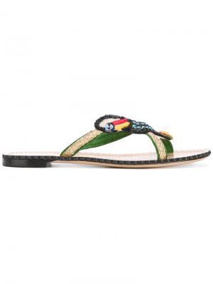 Сандалии с украшением в виде попугая Charlotte Olympia. Цвет: зелёный