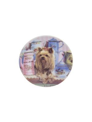 Тарелка декоративная Йорк Elan Gallery. Цвет: коричневый, голубой, розовый