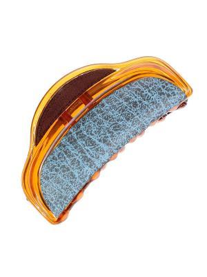 Краб Migura. Цвет: голубой, коричневый