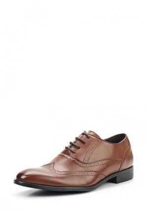 Туфли Clowse. Цвет: коричневый