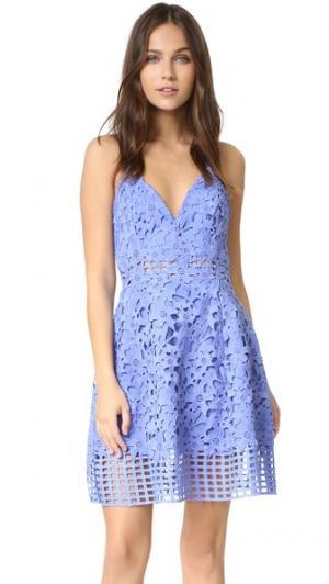 Платье Bellini Lovers + Friends. Цвет: серо-синий