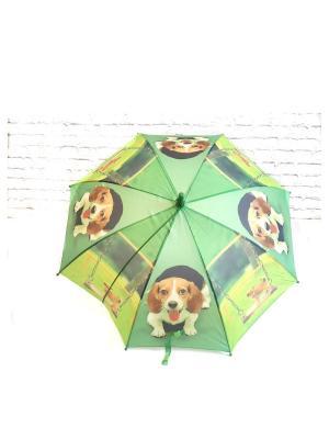 Зонт NeKi. Цвет: зеленый,желтый