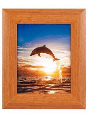 Ключница настенная Дельфин Aztek. Цвет: светло-коричневый