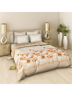 Комплект постельного белья 2 спальный Василиса. Цвет: персиковый