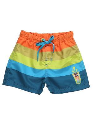 Купальные шорты Sweet Berry. Цвет: синий, зеленый, оранжевый