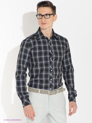 Рубашка Absolutex. Цвет: черный, белый
