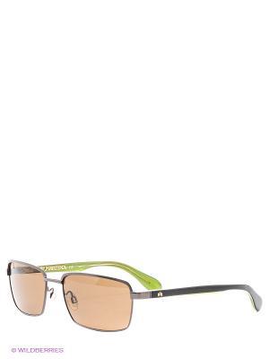 Очки солнцезащитные LM 509 02 La Martina. Цвет: зеленый
