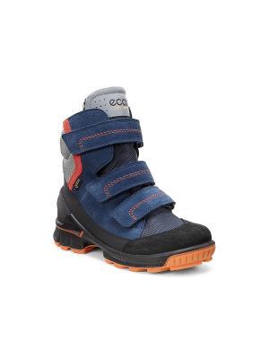 Спортивные ботинки ECCO. Цвет: черный, темно-синий