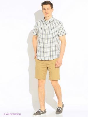 Рубашка Hazard. Цвет: салатовый