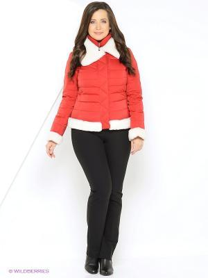 Куртка Windward. Цвет: красный