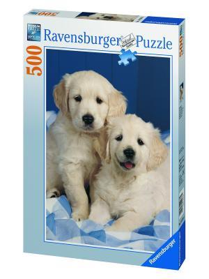 Пазл Белые щенки 500 шт Ravensburger. Цвет: синий