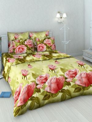 Комплект постельного белья из бязи Семейный Василиса. Цвет: оливковый, красный, розовый