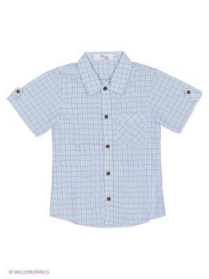 Рубашка Born. Цвет: голубой, серый
