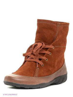 Ботинки Wilmar. Цвет: терракотовый
