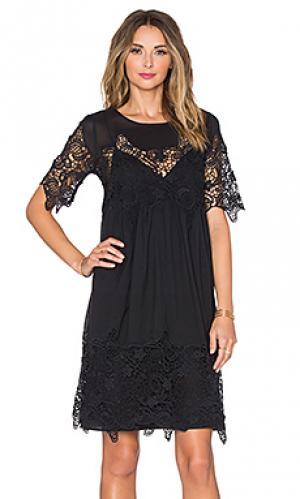 Платье iulia Velvet by Graham & Spencer. Цвет: черный
