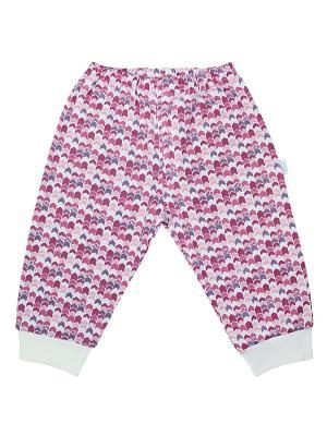 Ползунки Веселый малыш. Цвет: молочный, коралловый, розовый
