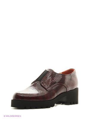 Ботинки ESTELLA. Цвет: бордовый