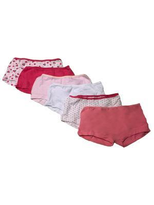 Трусы для девочек, 6 шт. Oztas kids' underwear. Цвет: лиловый, малиновый, розовый, белый