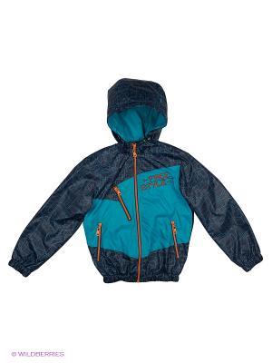 Куртка Артус. Цвет: синий