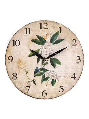 Часы настенные Mitya Veselkov. Цвет: зеленый, белый