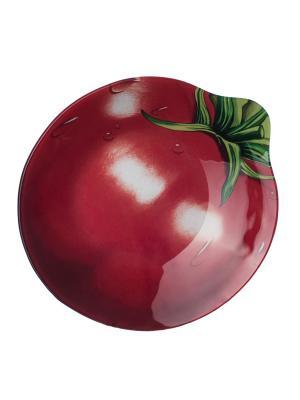 Салатник 20,5х22см Elff Ceramics. Цвет: красный, зеленый