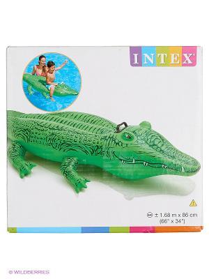 Надувной крокодил с держателями Intex. Цвет: зеленый