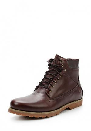 Ботинки Reflex. Цвет: бордовый