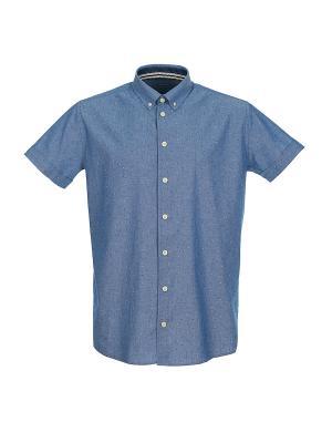 Рубашка Pre End (Дания) 34-100195. Цвет: синий