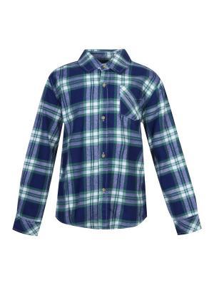 Рубашка FOX. Цвет: зеленый